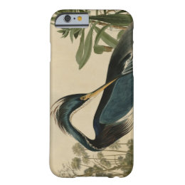 Louisiana Heron Barely There iPhone 6 Case
