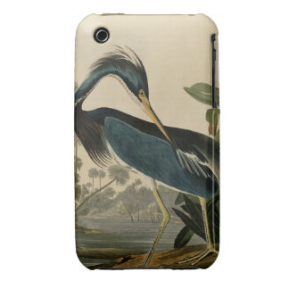 Louisiana Heron iPhone 3 Case-Mate Case