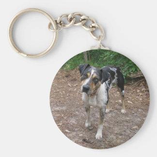Louisiana Leopard Dog Keychain