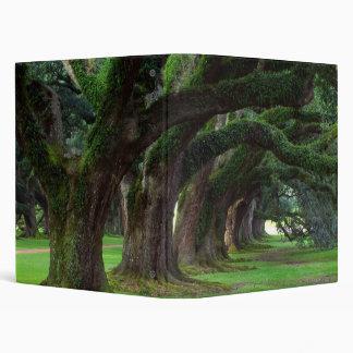 LOUISIANA LIVE OAK TREES CUSTOMIZABLE BINDERS