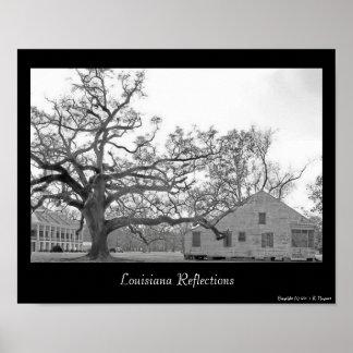Louisiana Reflections Poster