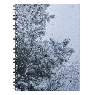 Louisiana Snow Notebook