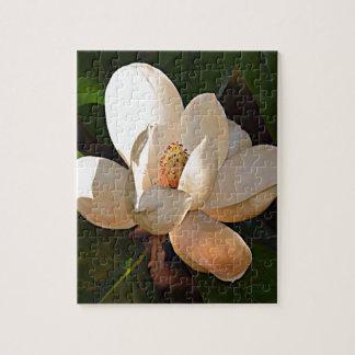 Louisiana Southern Magnolia Puzzle