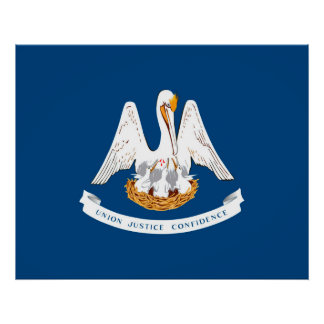 Louisiana State Flag Design Poster