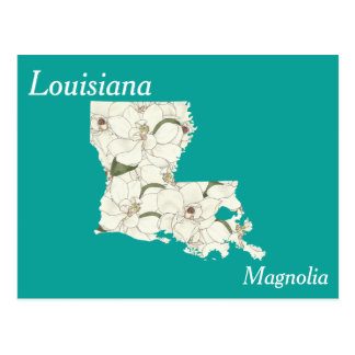 Louisiana State Flower Collage Map Postcard