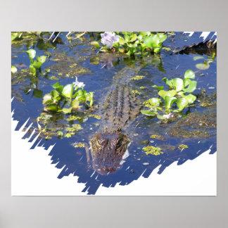 Louisiana Swamp Gator Hunter Poster