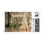Louisiana Swamp Stamp