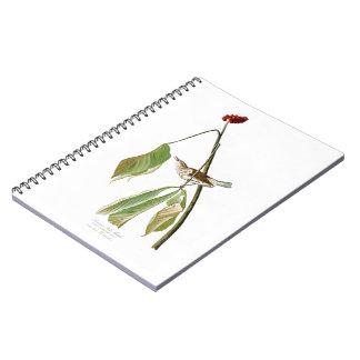 Louisiana Water Thrush John Audubon Birds America Spiral Notebook
