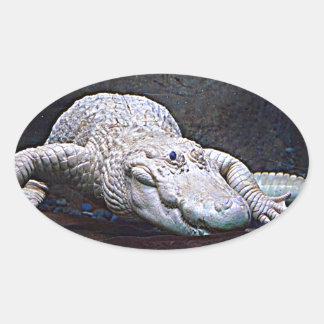 Louisiana White Alligator Oval Sticker