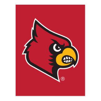 Louisville Cardinal Postcard
