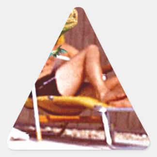 Lounge Lizard Chair Triangle Sticker