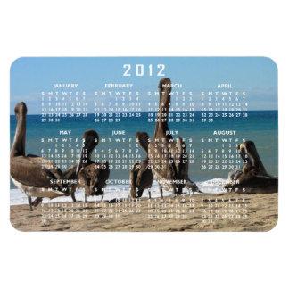 Lounging Beach Pelicans; 2012 Calendar Magnet