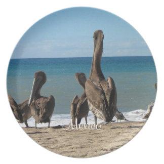 Lounging Beach Pelicans; Mexico Souvenir Plate