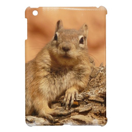 Lounging Chipmunk Cover For The iPad Mini