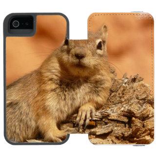 Lounging Chipmunk Incipio Watson™ iPhone 5 Wallet Case