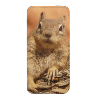 Lounging Chipmunk iPhone 5 Pouch