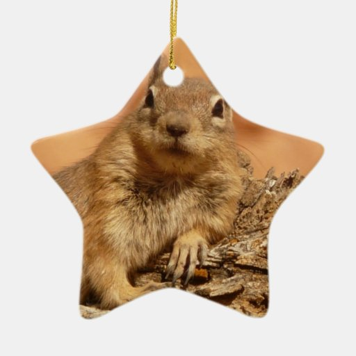 Lounging Chipmunk Ornament