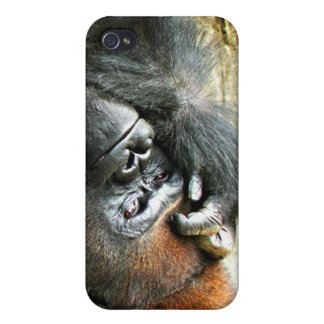 Lounging Gorilla  iPhone 4/4S Covers