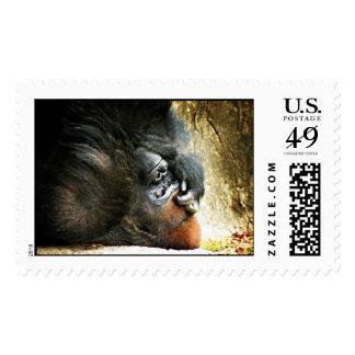 Lounging Gorilla Postage Stamps