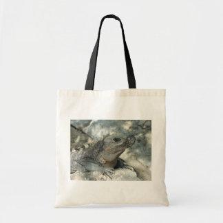 Lounging Iguana Canvas Bags
