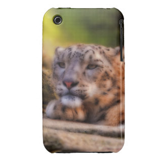 Lounging Leopard Case-Mate iPhone 3 Cases