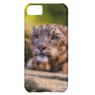 Lounging Leopard Cover For iPhone 5C