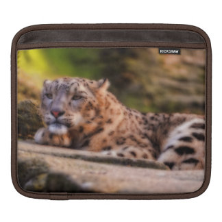 Lounging Leopard Sleeves For iPads
