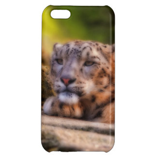 Lounging Leopard iPhone 5C Covers