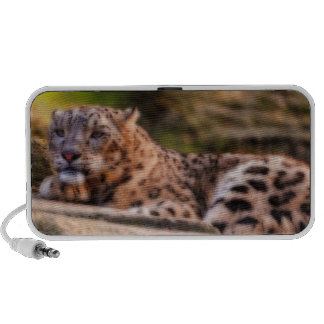 Lounging Leopard Laptop Speaker