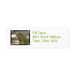 Lounging Lizard Return Address Label