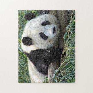 Lounging Panda Cub Puzzle