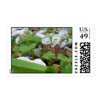 Lounging Postage Stamp