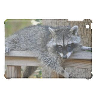 Lounging Raccoon on IPad Case
