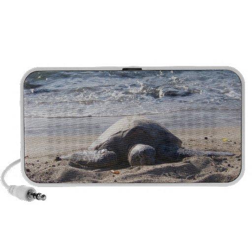 Lounging Turtle Notebook Speaker