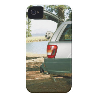 Lourensford, Somerset West, South Africa Case-Mate iPhone 4 Case
