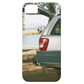 Lourensford, Somerset West, South Africa iPhone SE/5/5s Case