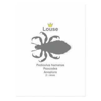Louse2 g5 postcard