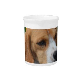 Lovable Beagle Drink Pitcher
