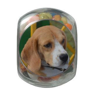 Lovable Beagle Glass Jars