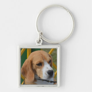 Lovable Beagle Keychain