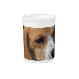 Lovable Beagle Pitcher