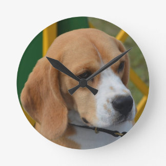 Lovable Beagle Round Clock