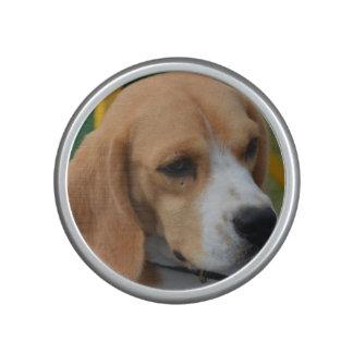 Lovable Beagle Speaker