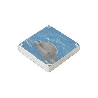 Lovable Dolphin Stone Magnet