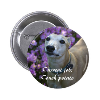 Lovable Greyhound Pinback Button