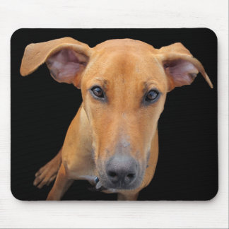 Lovable Hound Mouse Pad