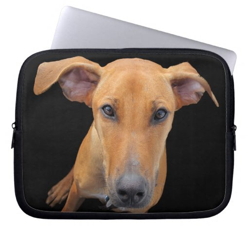 Lovable Rhodesian Ridgeback Dog Laptop Sleeve