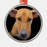 Lovable Rhodesian Ridgeback Dog Ornaments