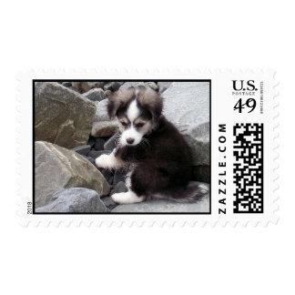 Lovable Stamp