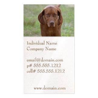 Lovable Vizsla Business Card